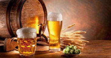 Rota Cervejas da Serra (com degustação)