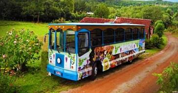 Tour Linha Bella